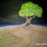 www.noame.co.il Shual 1